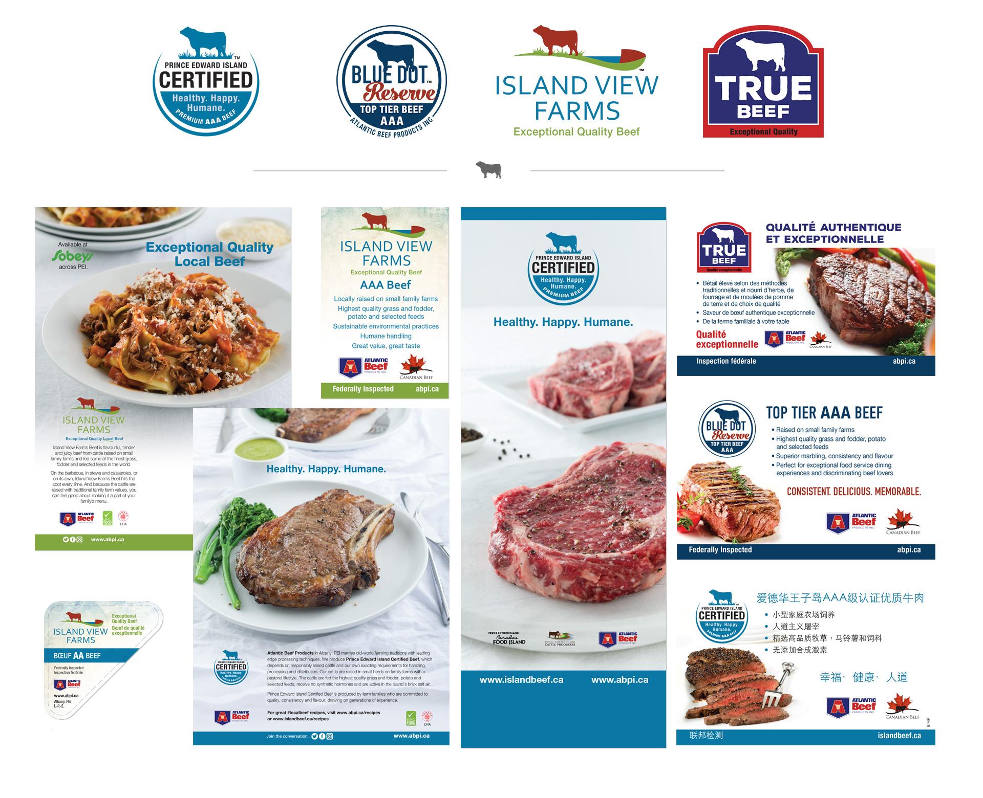 ABPI logos and print design