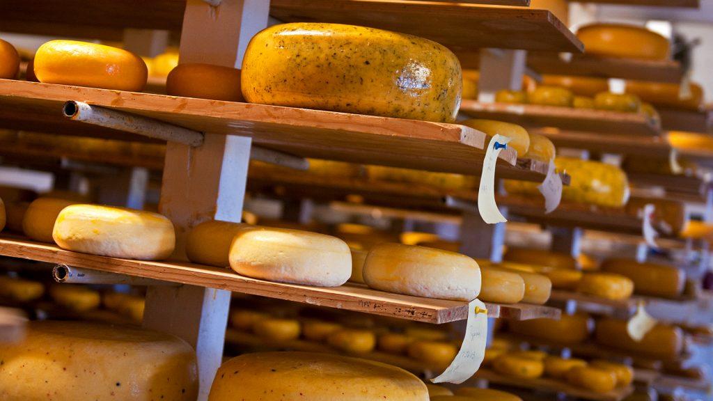 Glasgow Glen Farm Cheese Aging Room